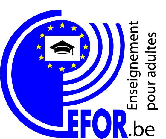 Logo pour TFE